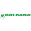 Alvaro Bernardoni
